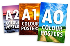 Image result for large format posters